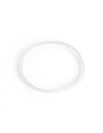 """10"""" Housing Seal Ring"""